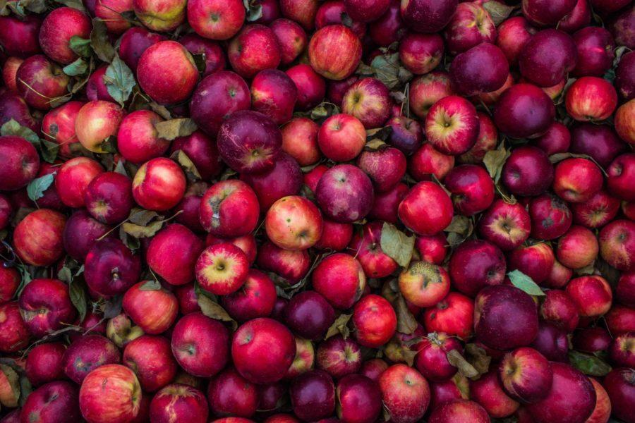 täna sööme õuna, c vitamiin, kaalujälgija, kaalust alla, tervislik toitumine